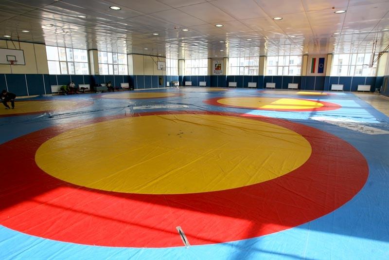 Горна Оряховица посреща шампионата по борба за момичета и кадетки