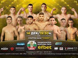 Nacionalna_boxova_liga