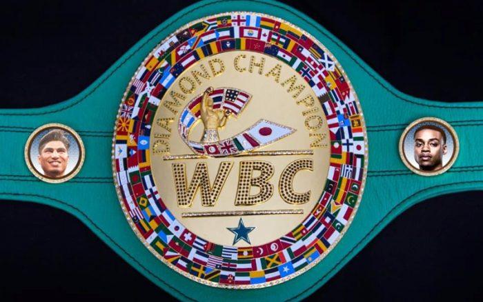 Звезди не искат профи боксьори на Олимпийски игри