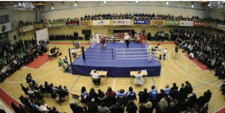 България с шестима боксьори на турнир в Литва