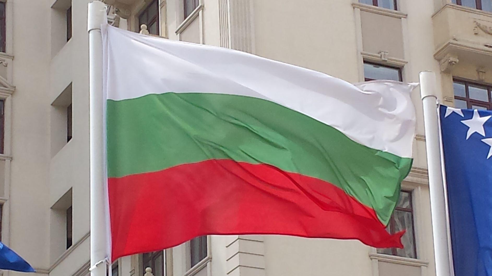 Два български финала в бокса и един репешаж в борбата днес