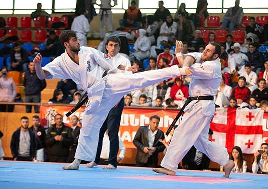 Армения приема Гран при по киокушин през 2020-та