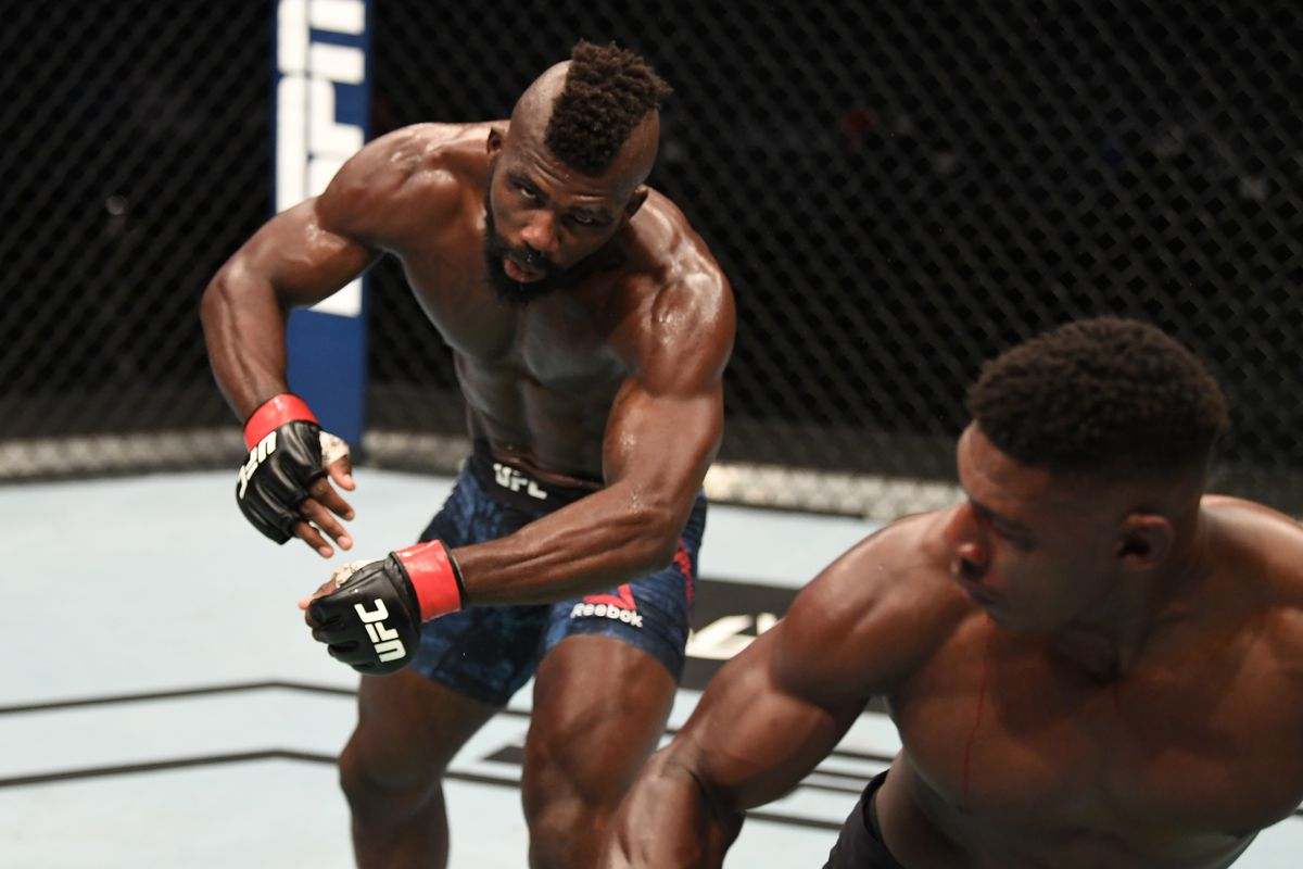 Най-добрите нокаути в UFC за 2020 (ВИДЕО)