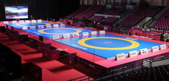 България влезе в топ 6 по медали от Европейското по борба (СТАТИСТИКА)